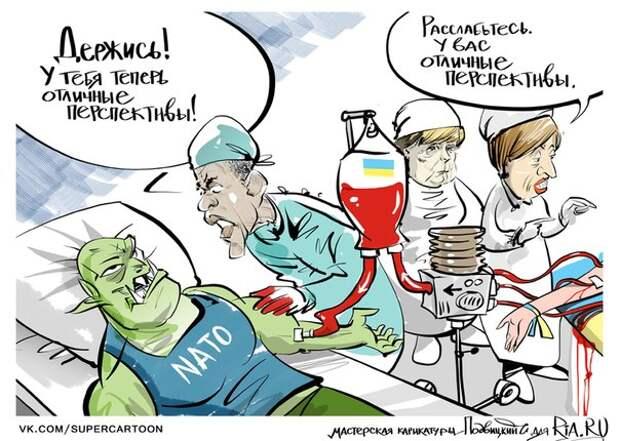 Министр обороны Украины: Страны НАТО начали поставку оружия Киеву