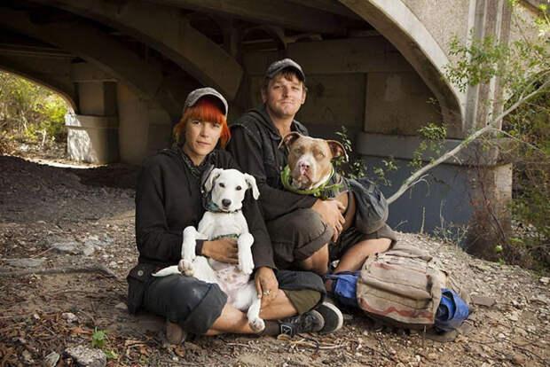25. Бездомные Мэгги и Эрик с любимцами по кличке Дикси и Рептар  бездомный, любовь, собака