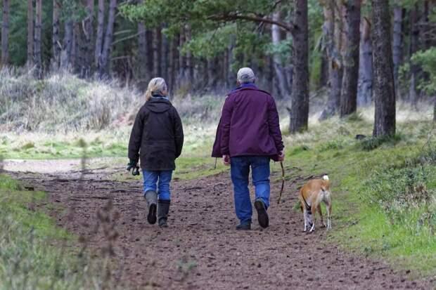 Жители Удмуртии могут высказать мнение по поводу мест выгула домашних животных