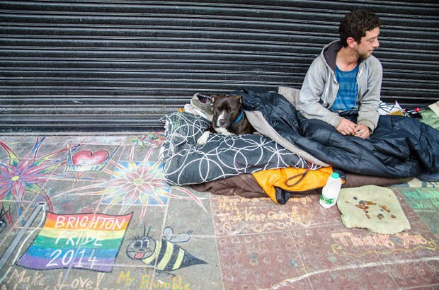 45. Бездомные во время гей-парада в Брайтоне бездомный, любовь, собака