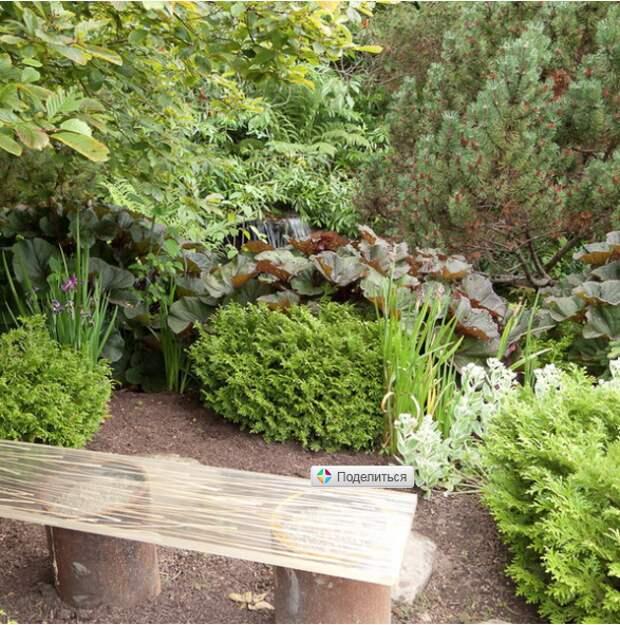 Как создать сад, идеальный для уединенного отдыха