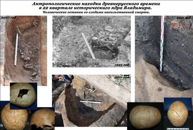 Антропологические находки Владимир