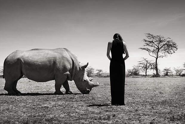 Потрясающие фотографии азиатских моделей рядом с животными