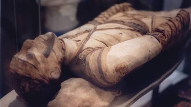 Следы табака и кокаина на телах египетских мумий. древности, загадки, история