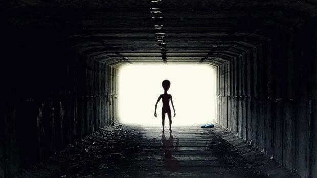 Профессор из Монтаны считает, что НЛО могут быть туристическими «круизными лайнерами» из Будущего