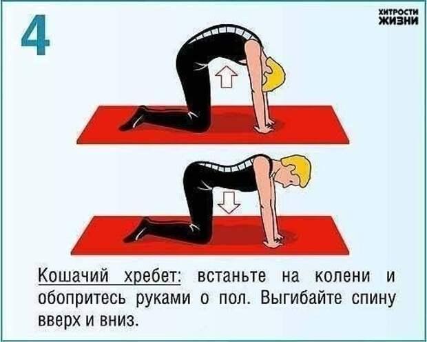 упражнения для пресса и спины4