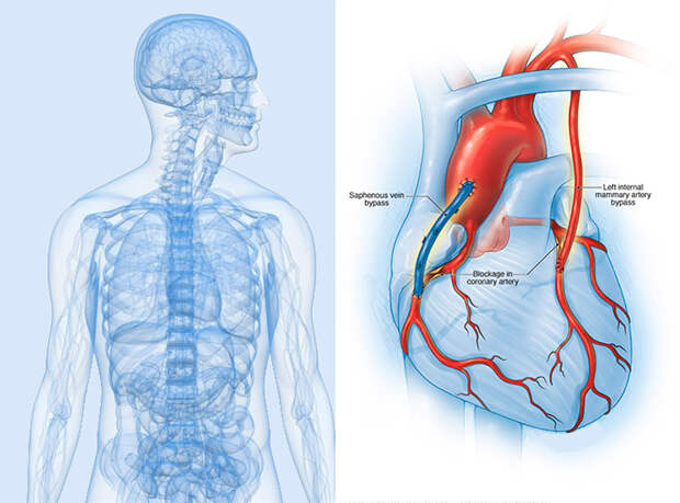 2 простых упражнения для оздоровления сердца