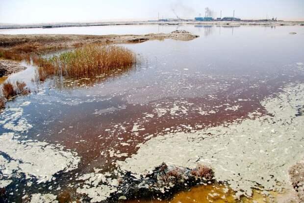 34. Загрязнённое озеро в Китае загрязнение, китай, экология
