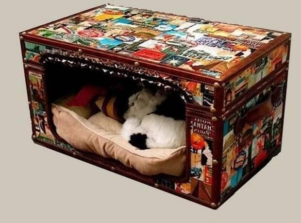 Как сделать домик для домашнего питомца из старого чемодана фото