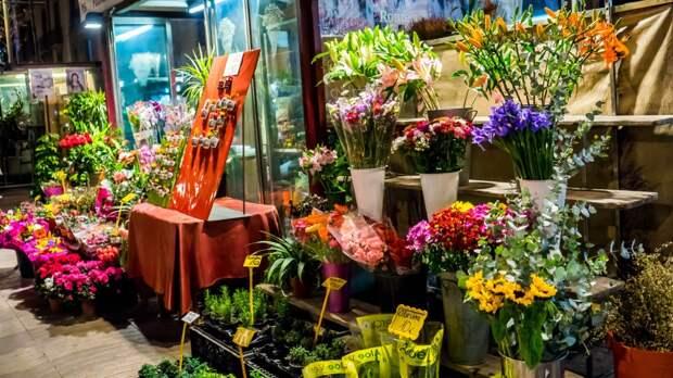 Продавец-флорист из Владивостока отшлепала по ягодицам эксгибициониста