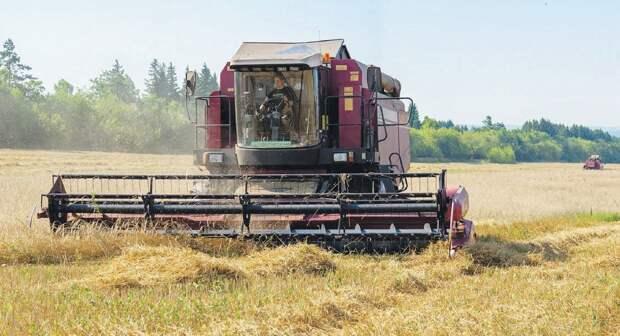 Новый грант смогут получить малые сельхозпредприятия Удмуртии в следующем году