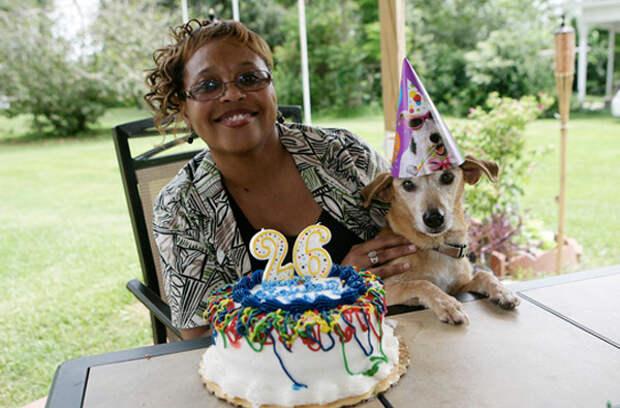 7 домашних животных-долгожителей