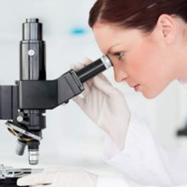 Российские ученые разрабатывают метод омоложения стволовых клеток