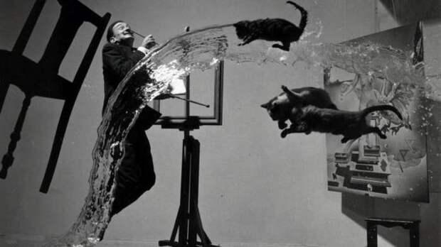 11 вызывающих фото гения сюрреализма Сальвадора Дали с животными