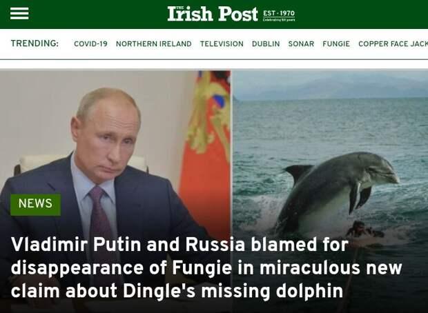 Путин ещё и дельфинчика в Ирландии загубил