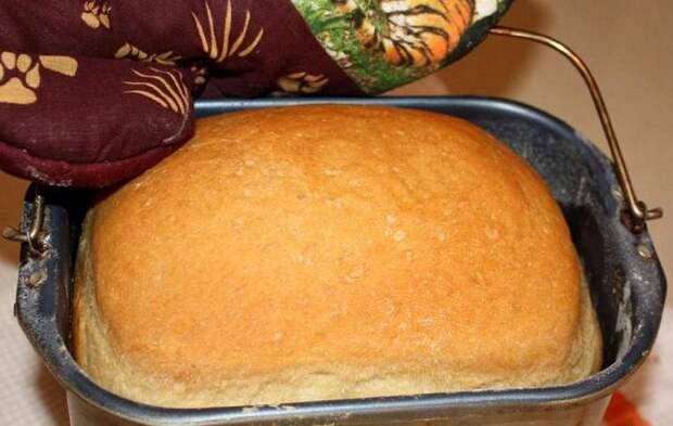 Когда домашний хлеб становится опасным для здоровья