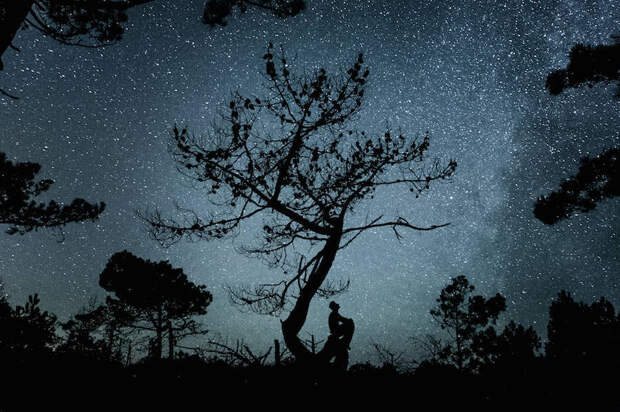 Звездное небо в серии пейзажных фотографий