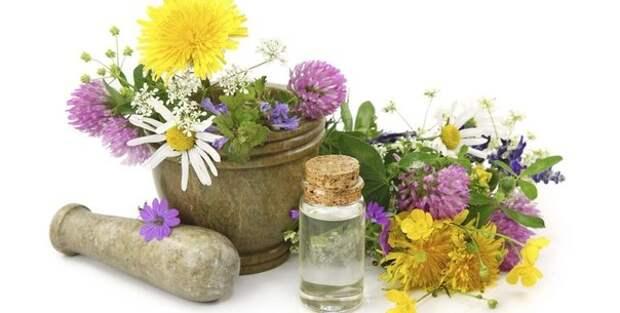 Альтернатива химии: натуральная косметика