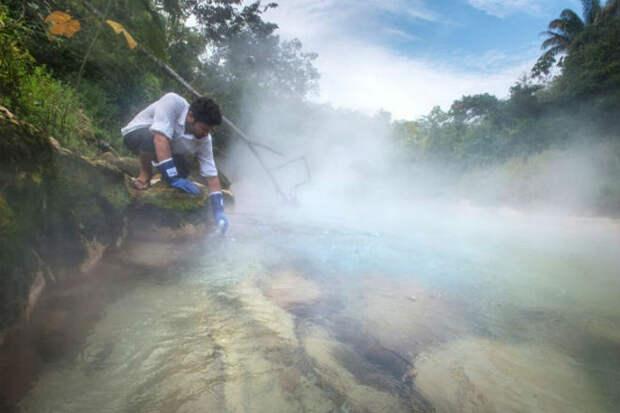 В джунглях Амазонии нашли реку, вода в которой кипит