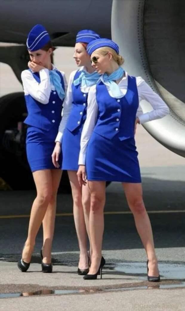 Ножки стюардесс. Подборка chert-poberi-styuardessy-chert-poberi-styuardessy-54320504012021-3 картинка chert-poberi-styuardessy-54320504012021-3