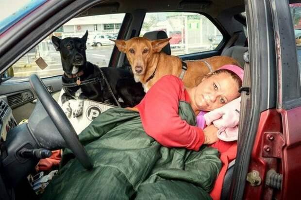 Вдохновляющая доброта: женщина терпела бездомную жизнь ради своих собак