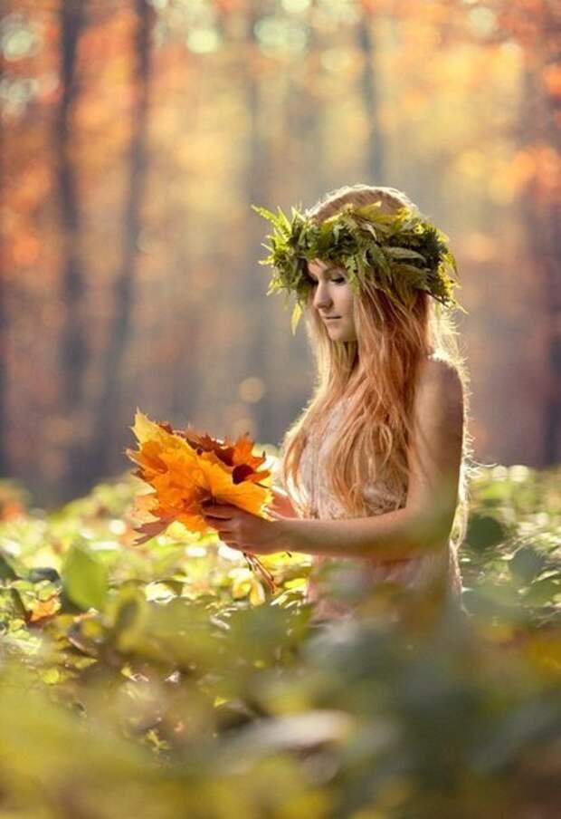 Нежность, красота, природа