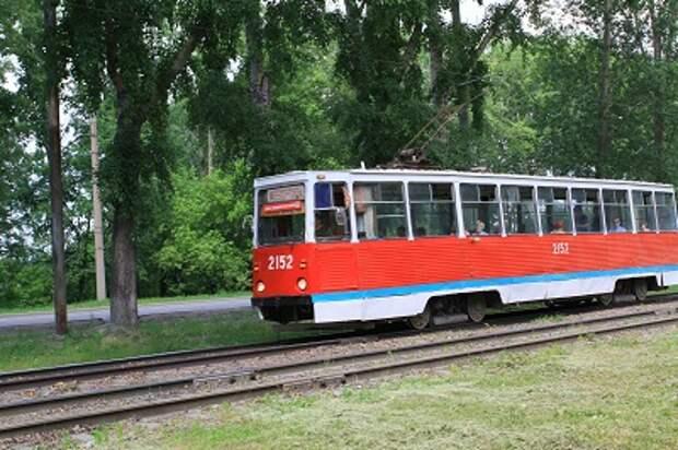 Льготы на проезд по социальной карте будут действовать в некоторых маршрутках в Новосибирске