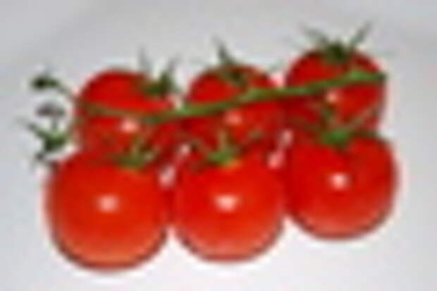 small tomatoes-1
