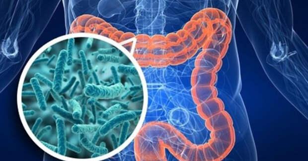 6 советов по очистке кишечника и профилактике диабета