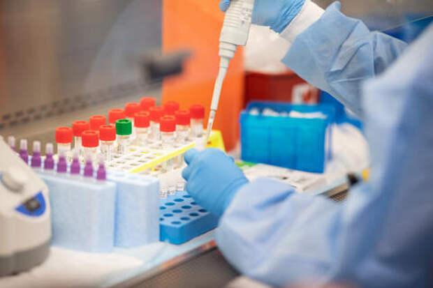 На Кубани умерло новое рекордное количество пациентов с коронавирусом