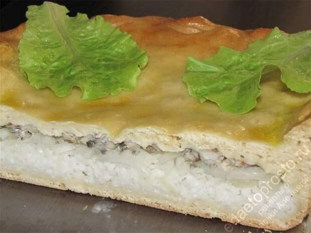 так выглядит рыбный пирог на разрезе, пирог с рыбой на тарелке