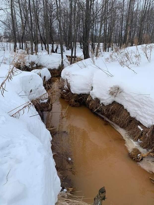 Осадок, обнаруженный в борской реке Везлома, оказался безопасным