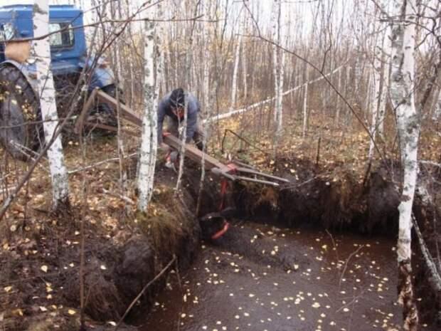 """Неожиданная """"находка"""" на болоте в лесу (4 фото)"""