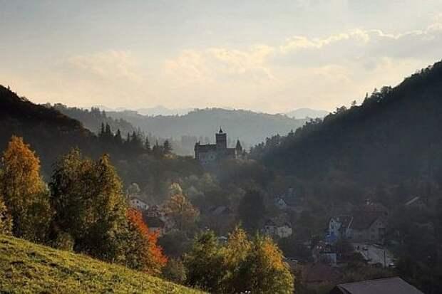 Таинственный лес на западе Румынии затмил по популярности легенды о Дракуле
