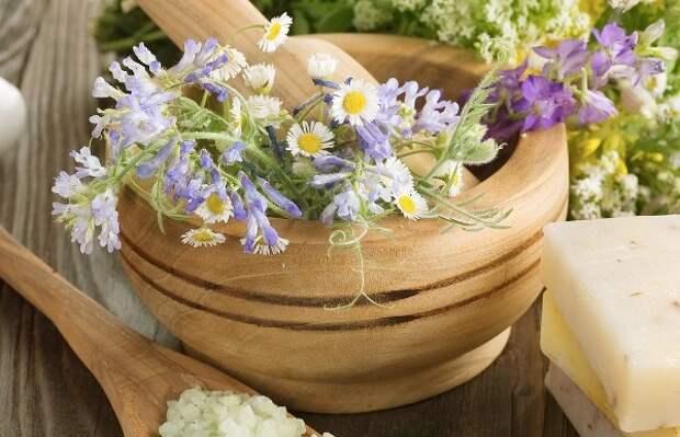 Лечение атопического дерматита травами