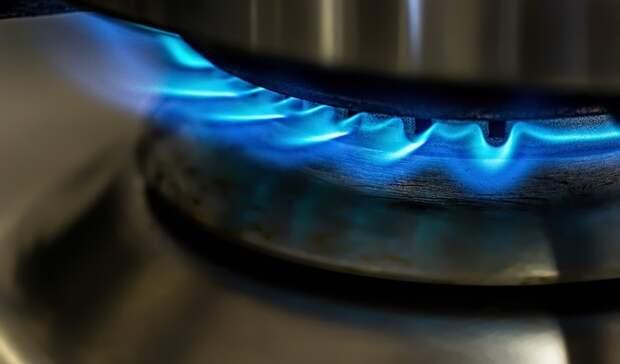 ЕР: единый оператор газификации позволит сделать подключение газа бесплатным