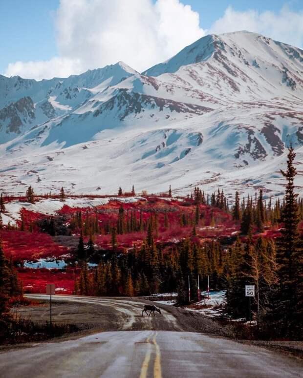 Мне кажется, что нас с тобой одной волною смоет: льды Аляски тают быстрее, чем все думали