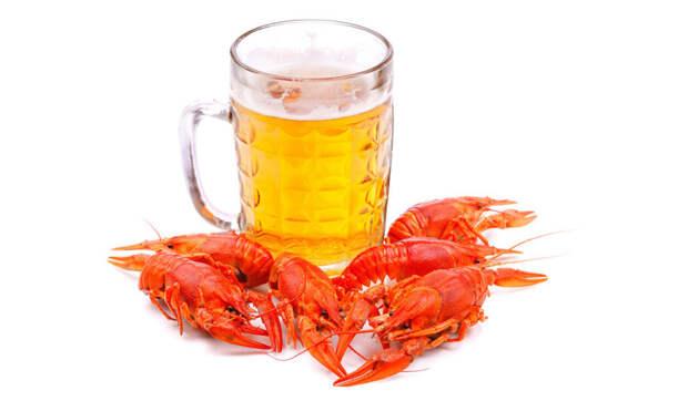 Пиво на самом деле не «дарит» вам «пивной» живот еда, здоровье, пиво, прикол, факты