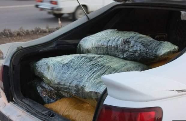 Что нельзя перевозить в багажнике после рыбалки и охоты. Готовьте деньги на штраф.