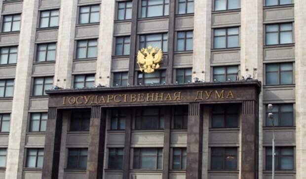 ВГосдуме оценили предложение наказывать запропаганду нарушения закона