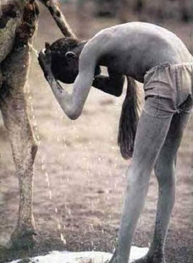 Мальчики племени бубал употреблеют в пищу коровьи выделения. | Фото: infoglaz.ru.