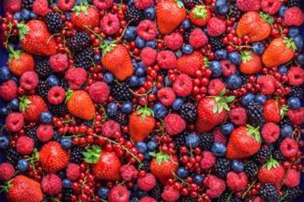 Разлюли малина. По цвету ягод можно определить, от каких болезней они помогают