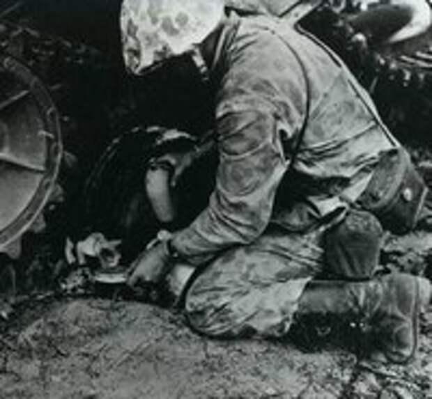 Кошки- герои Великой Отечественной войны