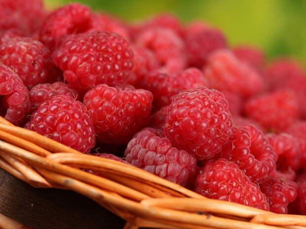 малина, корзинка, ягоды, макро, вкусно - (картинка, изображение, фото, обои 335208)