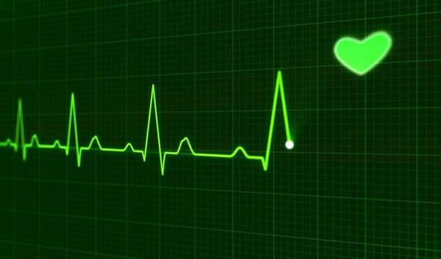 Владимир Путин включил замглавврача свердловской больницы всостав фонда «Круг добра»
