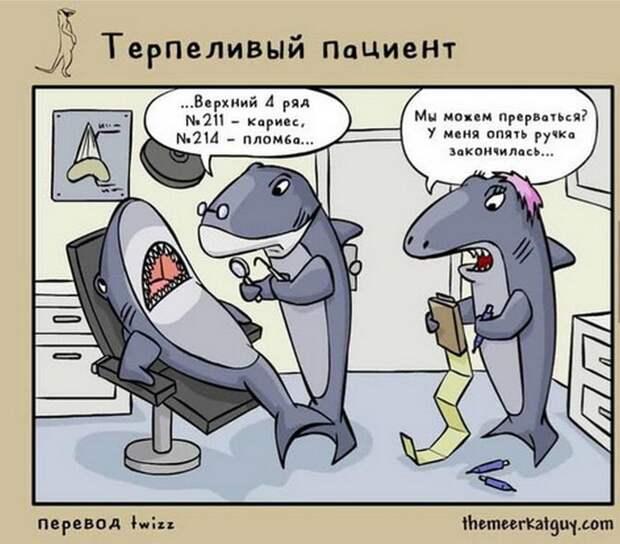 Юмор из интернета 156