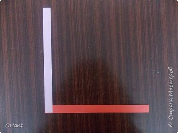 Мастер-класс Педагогический опыт Раннее развитие Бумагопластика Волшебные превращения бумажной ленточки Бумага фото 3