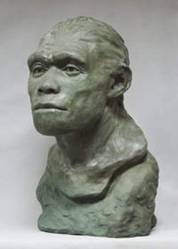 Рис.6. Homo heidelbergensis (Араго, Франция). Реконструкция Г.В.Лебединской
