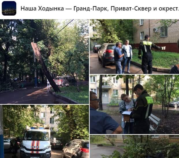 Департамент природы выявил нарушения в благоустройстве на Хорошевском шоссе