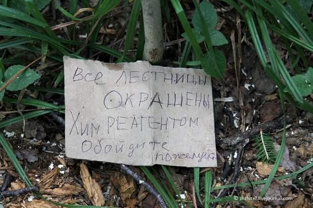 Чертово городище. Загадочное место в средней полосе России